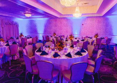 Salon-3-Purple-Colors